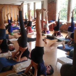 When Will Yoga Classes Go Back to Normal?
